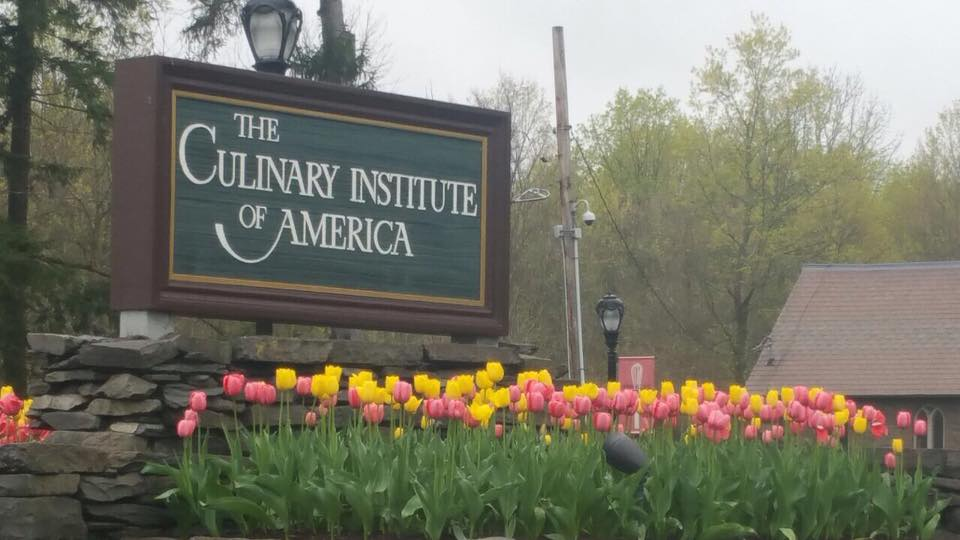 the culinary institute of america new york bava wines